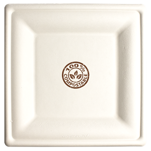 10in Square Compostable Paper Plate Bagasse